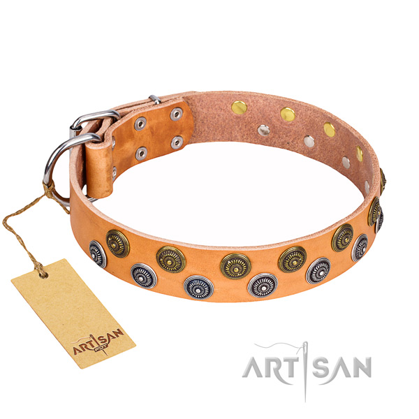 Incredible full grain genuine leather dog collar for daily use
