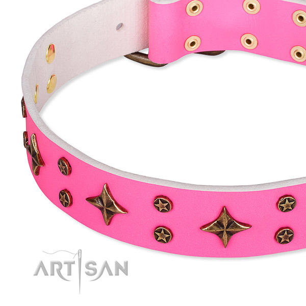 Full grain natural leather dog collar with inimitable decorations
