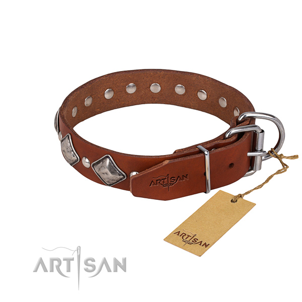 Long-lasting leather dog collar with strong details