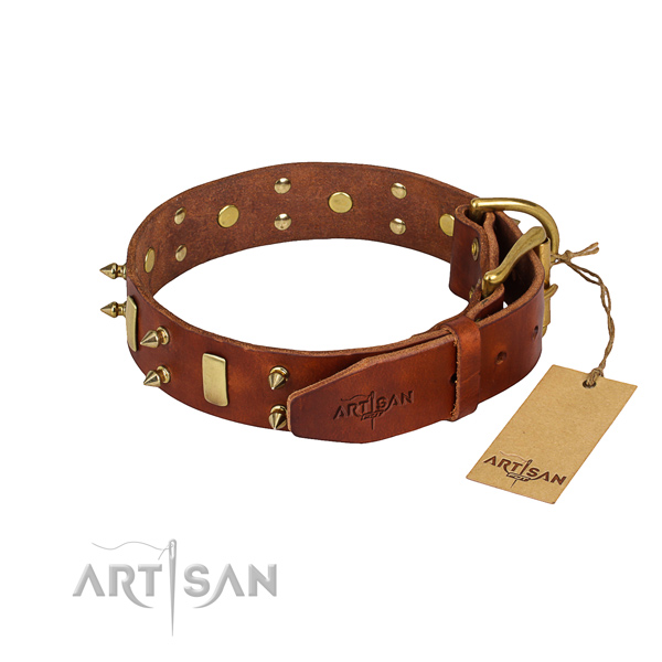 Durable leather dog collar with sturdy hardware