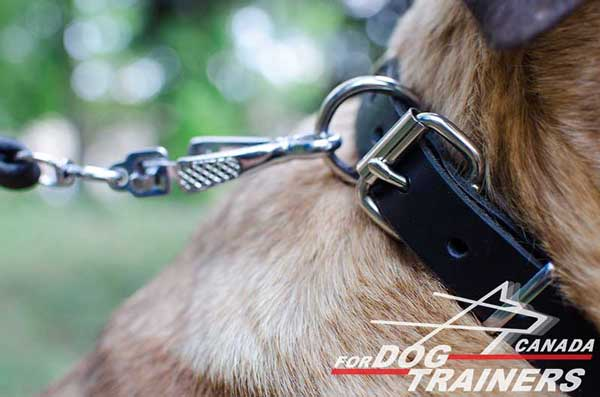 Dog collar with fitting for easier putting on and off