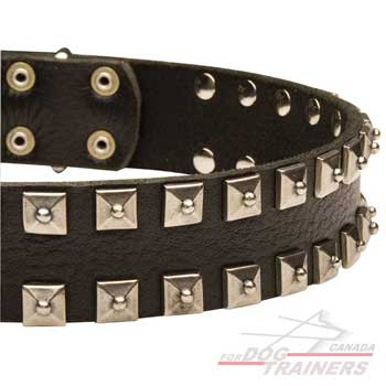 Dog collar with square-shapped decoration
