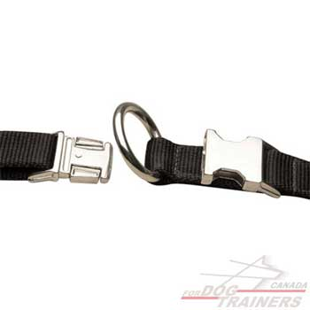 Dog collar with extra strong hardware