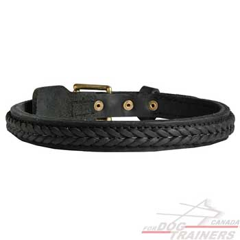 Braided leather dog collar with sturdy hardware  decoration