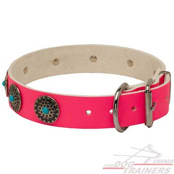 Leather pink dog collar with riveted fittings