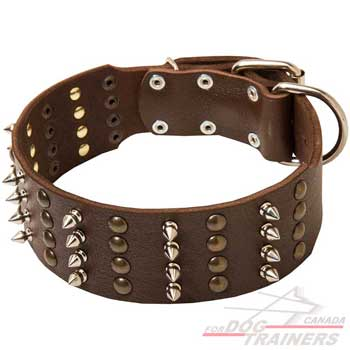 Leather dog collar spiked studded