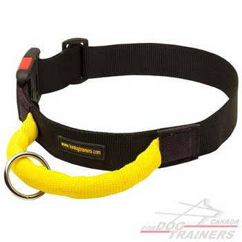 Dog collar nylon for walking in any weather