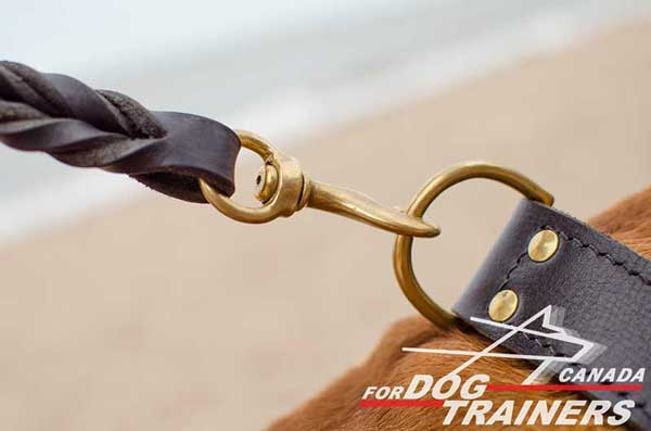 Leather Dog Collar with Easily Attached D-ring