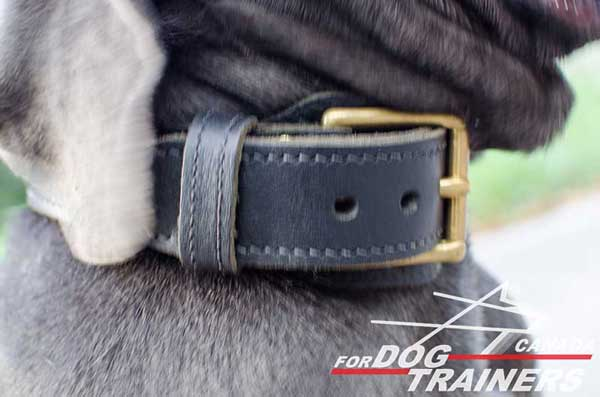 Leather Collar for Dog's Fur Protection