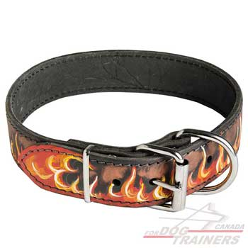 Handpainted Leather Collar for Canine Walking
