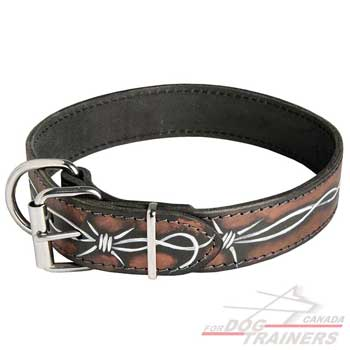 Leather Collar for Canine Walking and Training