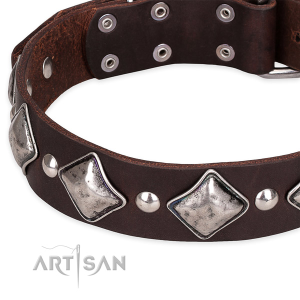 Adjustable leather dog collar with resistant durable hardware