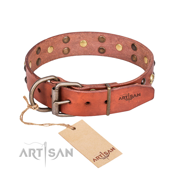 Genuine leather dog collar for stylish walking