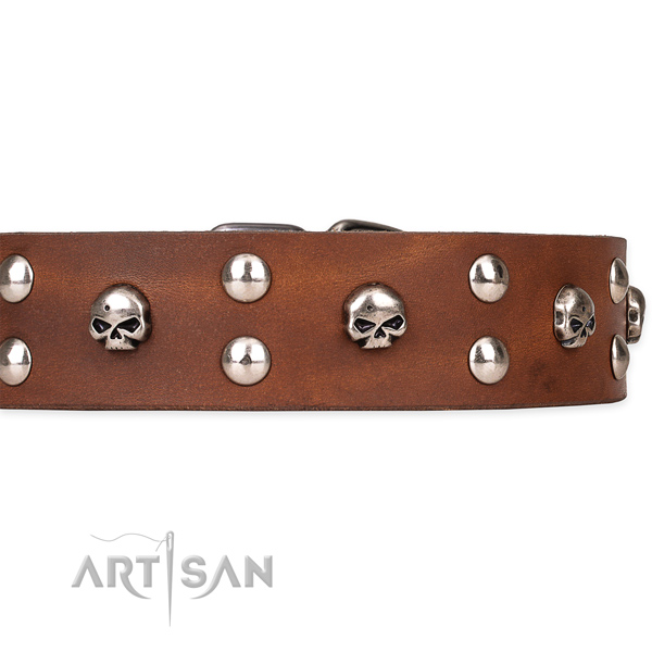 Full grain genuine leather dog collar with smoothed finish