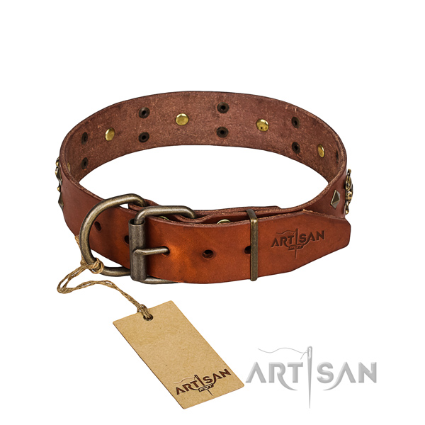 Dependable leather dog collar with rust-proof elements