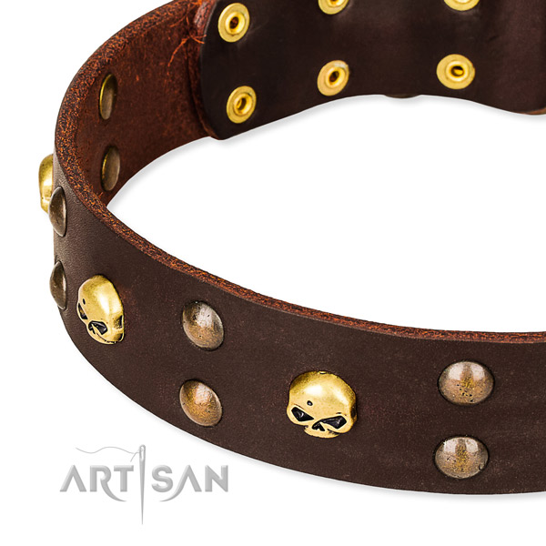 Leather dog collar with smooth edges for pleasant daily walking