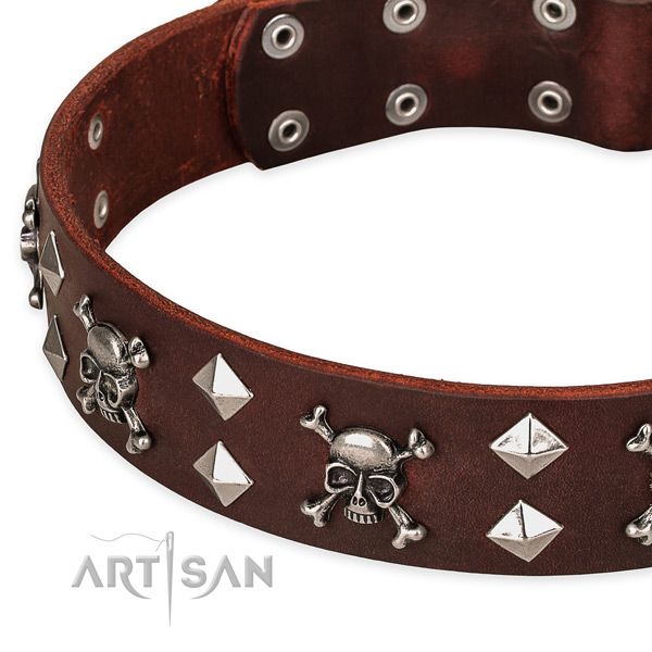 Everyday leather dog collar for easy walking