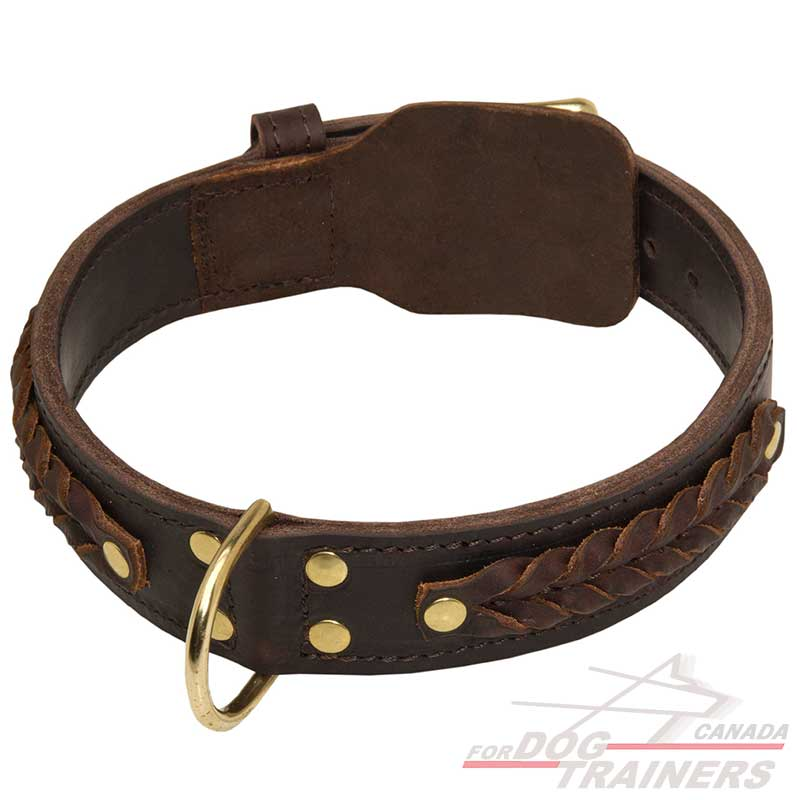 Canine Equipment Dog Collars