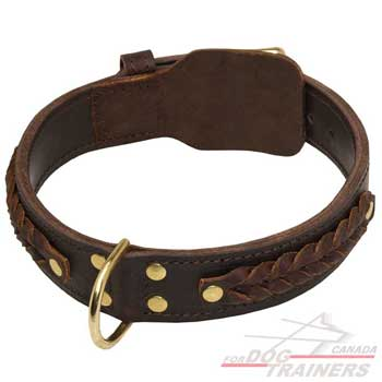 Leather dog collar with braids for stylish walking
