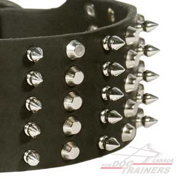 Nickel spikes and pyramids on leather collar
