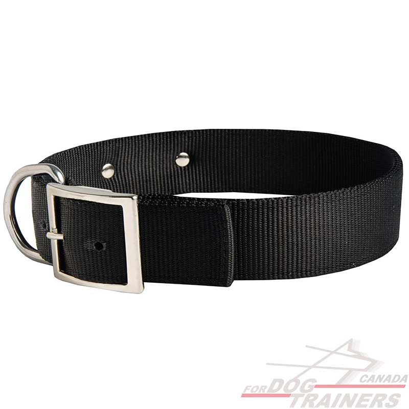 Personalized Leather Dog Collar, Custom Embroidered w/Pet Name & Phone Number – Soft Leather w/Rounded Edges for Comfort Fit in Small, Medium, or Large.
