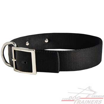 Nylon Dog Collar with Durable Buckle and D-ring