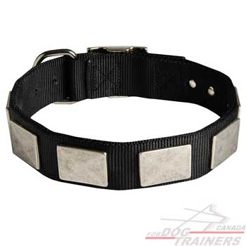 Nylon Collar for Dog Fashion Walking