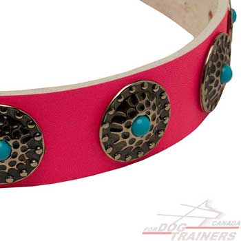 Dog leather pink collar with round plates decoration