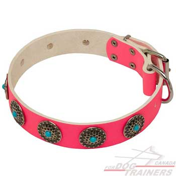 Dog leather pink collar decorated strong and wide