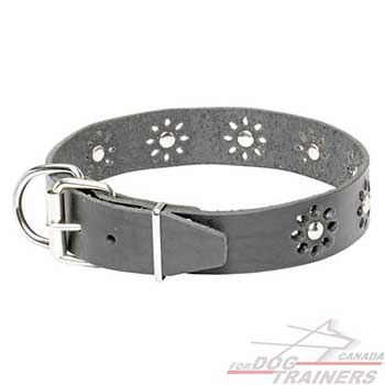 Steel nickel plated hardware on black leather collar for dogs