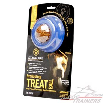 Medium Dog Toy for Better Hygiene