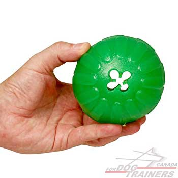 Dog Rubber Ball of High-quality Materials