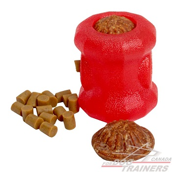Durable Chew Dog Treat Holder