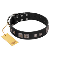 """Foregone Riches"" FDT Artisan Black Leather dog Collar with Old Silver-like Square Studs and Pyramids"