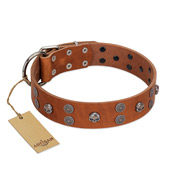 """Road Rider"" FDT Artisan Tan Leather dog Collar with Old Silver-like Skulls and Medallions"