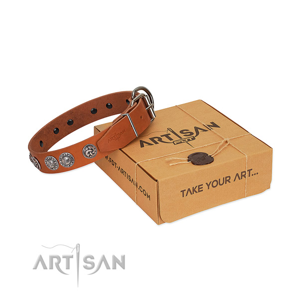 Trendy full grain natural leather collar for your canine walking in style