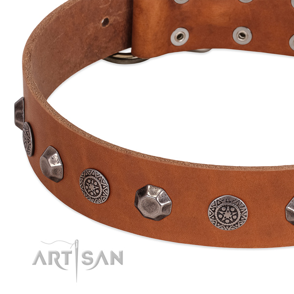 Inimitable leather collar for your dog stylish walking