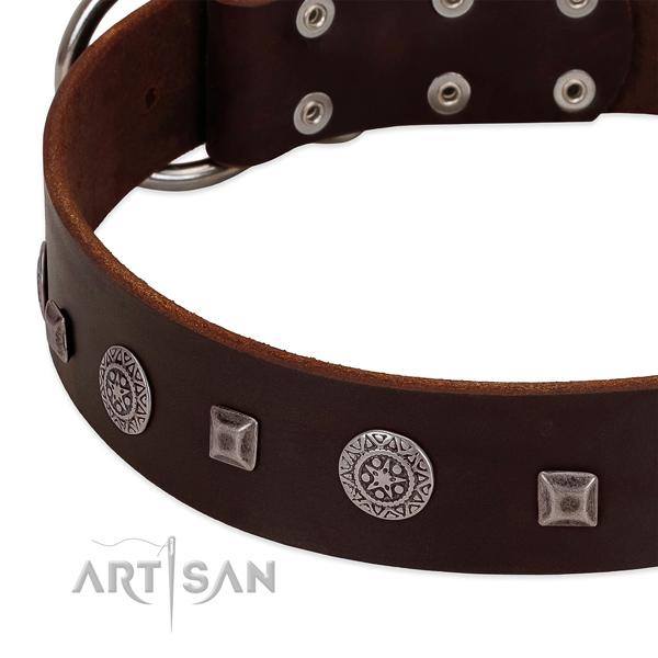 Flexible genuine leather dog collar with impressive embellishments