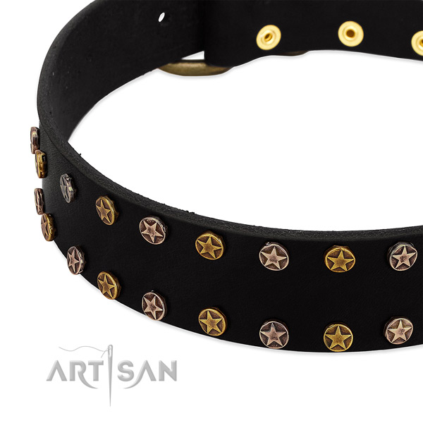Remarkable embellishments on leather collar for your dog