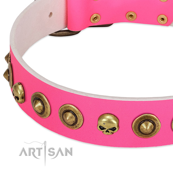 Stylish decorations on leather collar for your dog