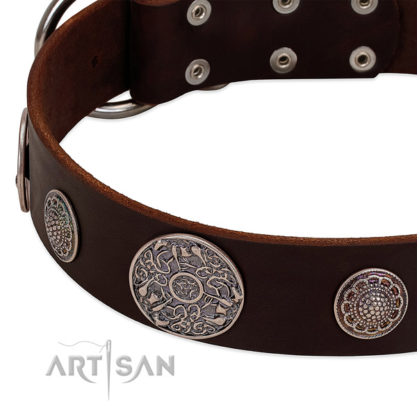Rust-proof embellishments on full grain natural leather dog collar