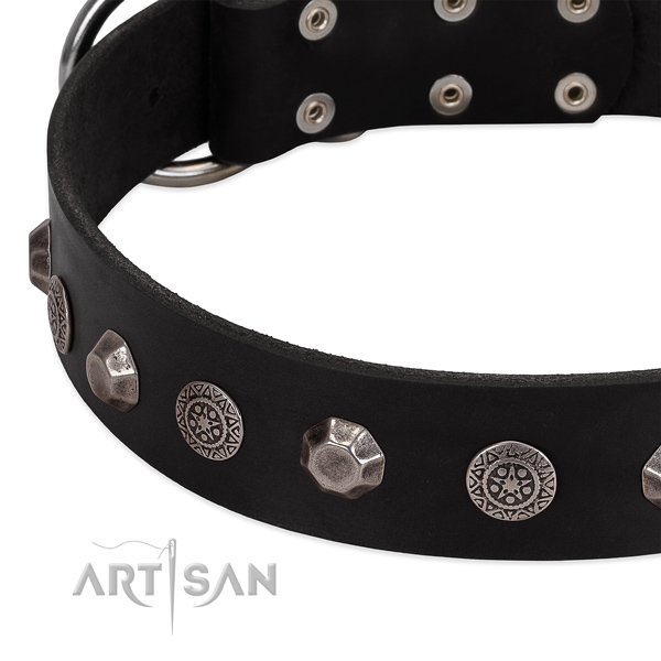 Decorated genuine leather dog collar for daily use