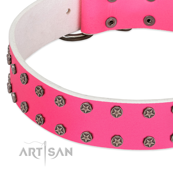 Quality natural leather dog collar with studs for your dog