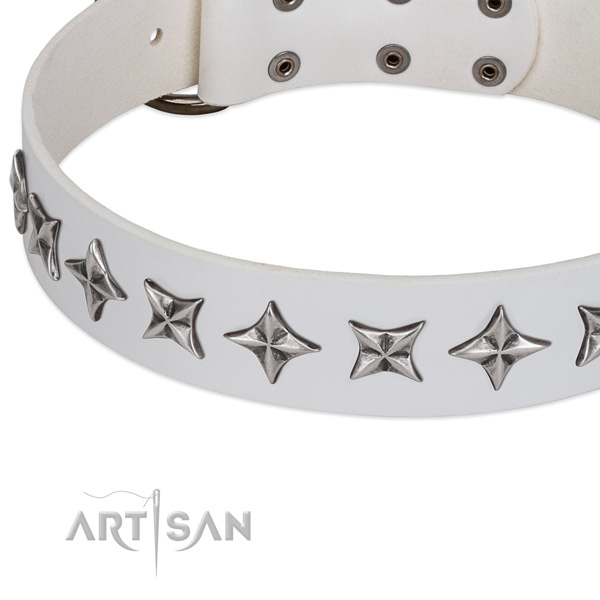 Daily walking embellished dog collar of quality full grain genuine leather
