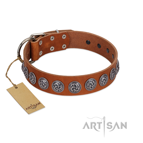Top rate full grain leather dog collar for your impressive four-legged friend