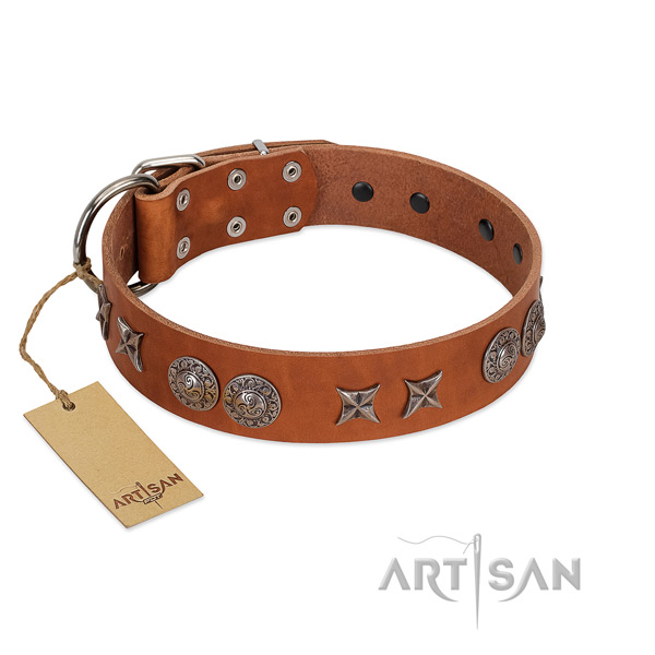 Natural leather collar with designer embellishments for your dog