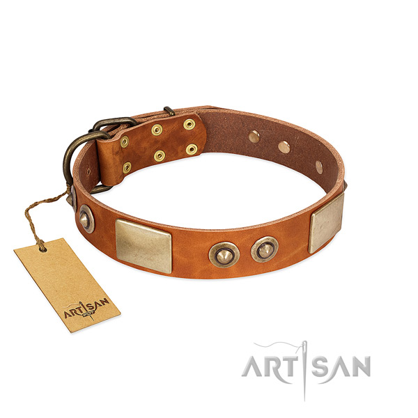 Easy adjustable natural genuine leather dog collar for everyday walking your dog