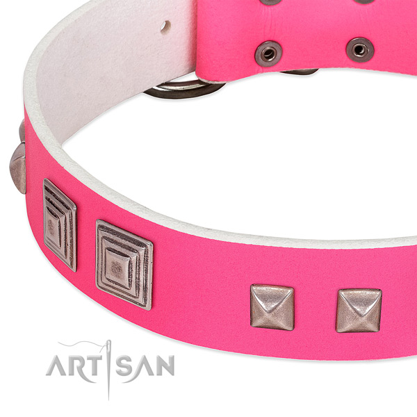 Full grain natural leather dog collar of high quality material with exceptional embellishments