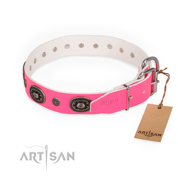 Daily use designer dog collar with corrosion resistant fittings