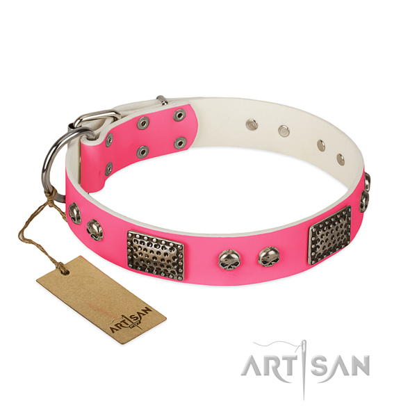 Easy wearing leather dog collar for basic training your four-legged friend